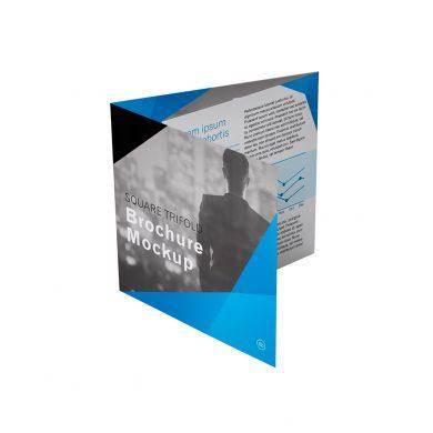 Brochures / Dépliants / Catalogues
